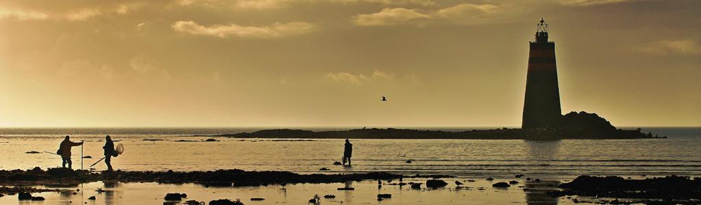 Pêche à pied<br />Pêche en mer