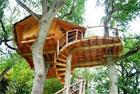 box-cabane-arbre